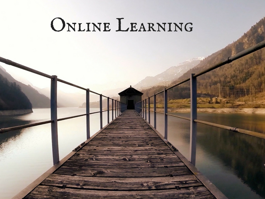 Online learning meme-Deborah Johnson